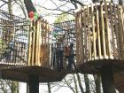 Baumhäuser hoch in den Baumwipfeln
